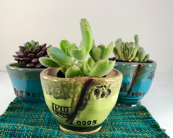 Pottery tea bowl planters - wheel thrown - lime green - turquoise blue - stamped with honey bee
