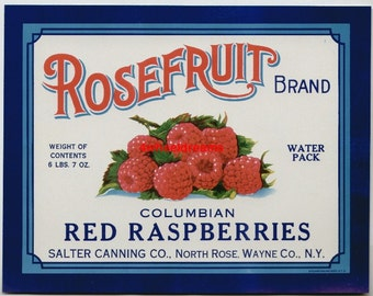1930s Red Raspberries Salter North Rose Wayne County NY Vintage Can Label