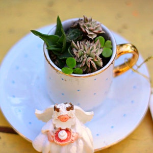Adorable Mini Tea Cup And Saucer W/ Movable Angel Succulent  Arrangement Succulent Cactus
