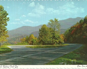 Vintage 1970s Postcard Tennessee Fall Leaves Fighting Creek Gap Great Smoky Mountains National Park Photochrome Era Postally Unused