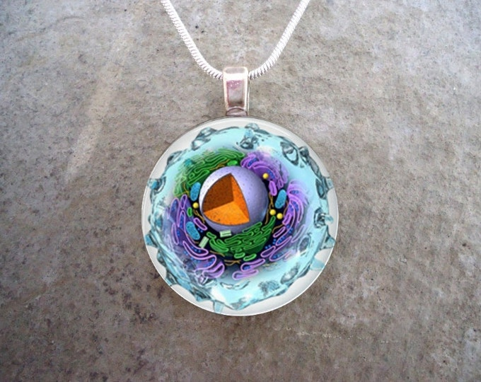Cell Jewelry - Glass Pendant Necklace - Science Jewellery - Cell 2