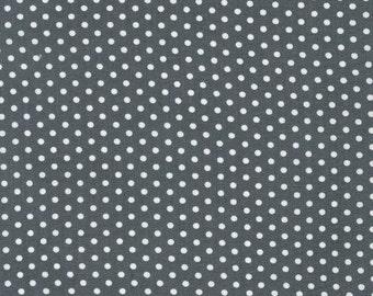 Spot On Grey Mini Dots From Robert Kaufman