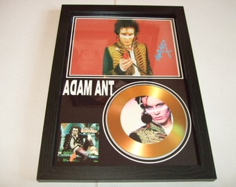 adam ant   signed disc display