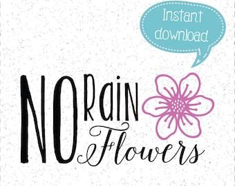 No Rain No Flowers SVG, Flowers SVGs, No Rain SVGs, Cricut Cut File, Silhouette File