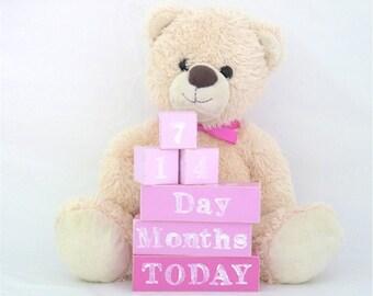 Baby age blocks, milestone blocks, baby photo prop, milestone age blocks - Nursery decor - Pinks