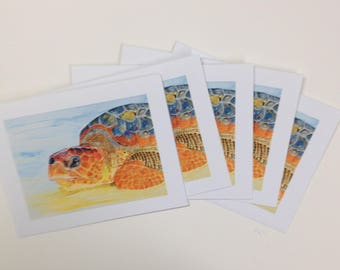Golden Girl-Seat Turtle Cards-5 pack