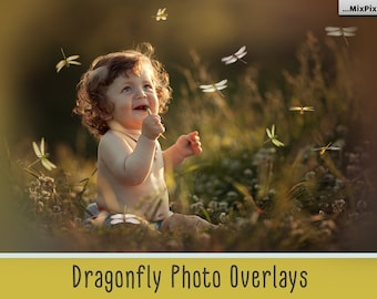 Dragonfly overlays, PNG, Photoshop overlay, Firefly butterfly, Photo Overlays, Lightning Bug, Fairies Gleam, Glow Overlays, magic overlays