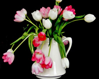 White Vase Pink and White Tulips Black Background Square Archival Fine Art Photograph