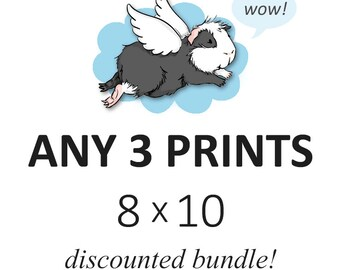 DISCOUNTED SET - you choose any three 8 x 10 prints - cute guinea pig art custom set of 3