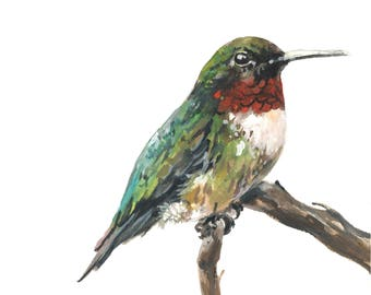 Hummingbird, Hummingbird print, Hummingbird watercolor, Ruby-Throated Hummingbird, Hummingbird art, Hummingbird painting, nursery art