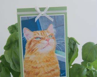 Small blank card of my orange cat
