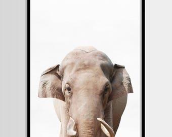 Elephant print, African Safari, Nursery decor, Animal, Kids room, Modern Wall, Digital art, Printable, Instant Download 8x10, 11x14, 16x20