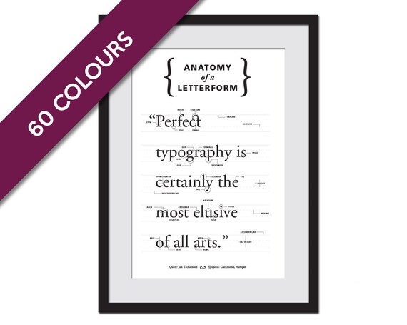 Anatomy of a Letterform Typeface Poster Type Poster