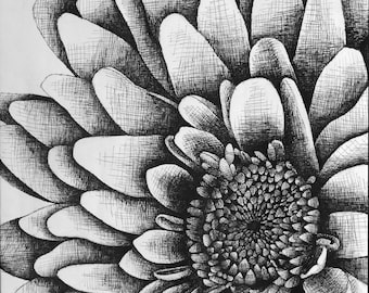 Pen and Ink Flower