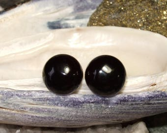 Black Onyx 10mm Stud Earrings Earings Titanium Posts and Clutches Hypo Allergenic Handmade in Newfoundland Integrity