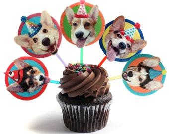 Corgi Dogs Cupcake Toppers - set of 6 - photo reproductions on felt - funny Corgi portraits birthday cake decor