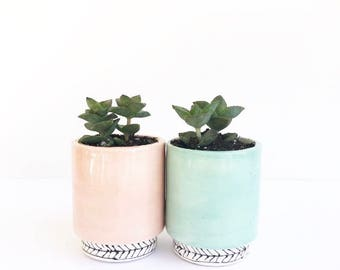 The Luxsy Pot Handmade Ceramic Planter Cactus Pot