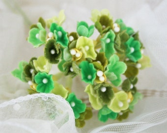 Green Mix Forget Me Not flowers