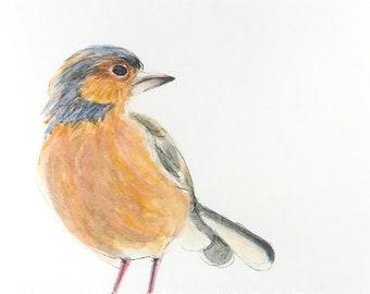 Watercolor Print - Finch