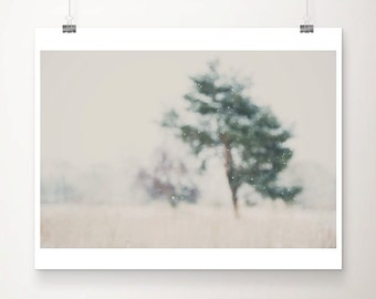 winter photograph  falling snow photograph tree photograph nature photography landscape photograph snow print tree print