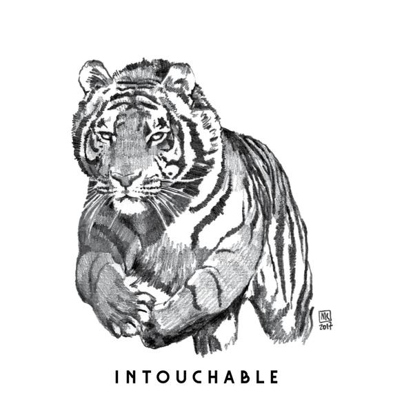 T-shirt coton biologique: tigre INTOUCHABLE (untouchable tiger) animal totem 2017 illustration dessin 34g3fHtWl