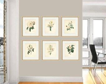 Antique botanical print Botanical art prints flower prints wall art flowers botanical poster antique wall art home decor wall art SET of 6