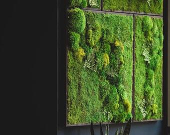 Marvelous Moss Wall Decor | Etsy