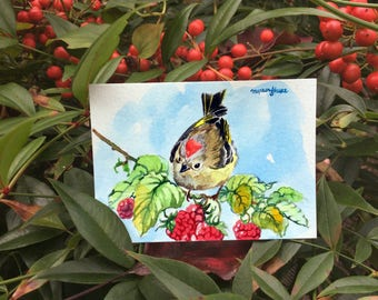 ACEO Original watercolor- Ruby crowned kinglet and berries, Gift for bird lovers, Bird art, Miniature painting, Gift for her