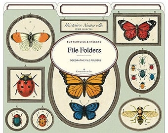 Cavallini File Folder Natural History Insects & Butterflies PSS 3421