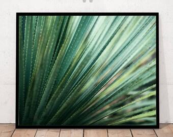 Botanical Print, Leaf Photography, Close Up Leaves, Green Photography, Details Green Leaves, Botanical Wall Art, Art Photography, Botanical