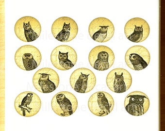 Wise Owl Circles Ceramic Decals, Glass Fusing Decals, Enamel Decals