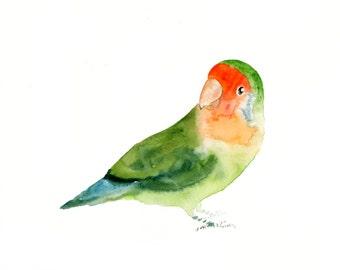 LOVEBIRD- 10x8inch print-Art Print-Bird Watercolor Print-Giclee Print-