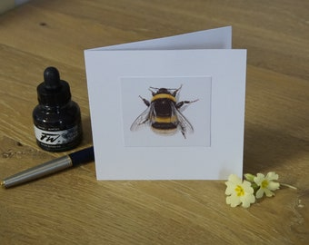 Buff-tailed Bumblebee Greeting Card. From Original wildlife painting. Blank inside. Garden wildlife