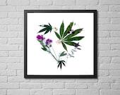 botanical photography pri...