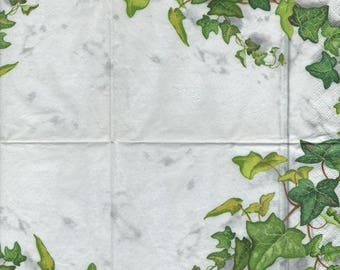 3221 - 1 Ivy border paper towel