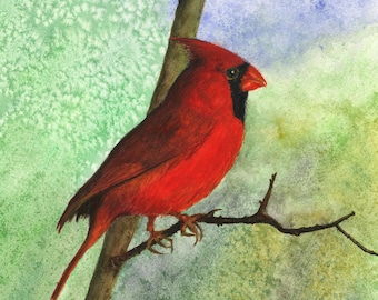 """Cardinal, fine art giclee reproduction of an original watercolor painting by Meike Geisler 8.5"""" x 11.25"""" cardinal,red,brown,gray,orange"""
