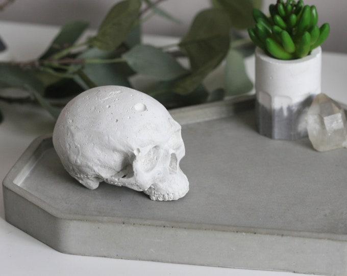 Decorative Concrete Skull | Concrete Home Accessories | Concrete Homeware | Mystic