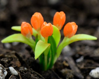 Miniature Orange Tulip Flower Glass Terrarium Filler Hand Made Clay Plant Scale 1:12 Terrarium Supplies Jewelry Supplies