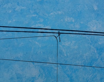 Power Lines 21