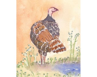 Wild Turkey Archival Print, by Michelle Kogan, 11 x 14, Watercolor, Art & Collectibles, Painting, Giclee, Drawing and Illustration, Birds