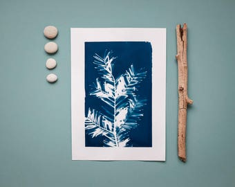 """Original cyanotype """"Branched conifer"""" on bulky drawing paper in DIN A4 format"""