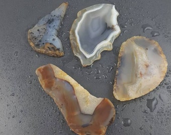 Lot of 4 Montana Agate Slabs, lapidary, lapidary slabs, lapidary supplies, cabochon making, cab making, cabbing supplies, slabs, mgsupply