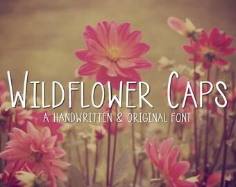 Digital Font Download- Handwritten Font for Commercial Use- Wildflower Caps- True Type Font ttf, Open Type Font otf- Instant Download
