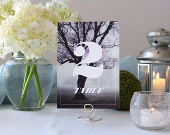 Photograph Beautiful Forest Table Marker Tree Nature Romantic Wedding Number