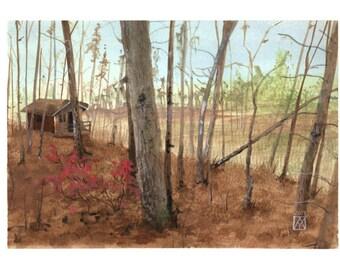 Paysage de Shenandoah en novembre - automne, foret, bois, chalet, paysage, montagne, autumn, cabin in the woods, landscape