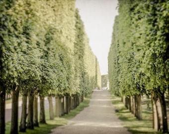 Versailles Garden Photograph - France Photography - Palace of Versailles - Versailles Photography - Paris France