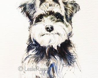 Schnauzer Watercolor and Ink Print, 8x10 from Original Watercolorlor, Pen and Ink