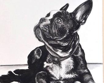 A3 Custom Pet Portrait- Medium Charcoal