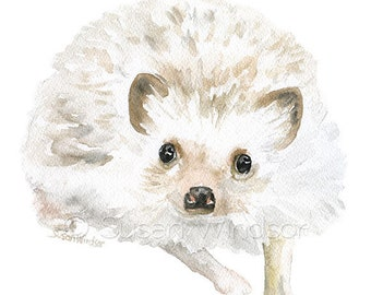 """Hedgehog 2 Watercolor Painting ACEO print - Giclee Print Reproduction 2.5""""x3.5"""""""