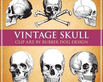 VINTAGE SKULL COLLECTION - Digital Clip Art Graphics for Personal or Commercial Use